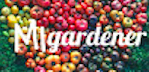 MIgardener – Nominee to be Best Garden Channel on Youtube